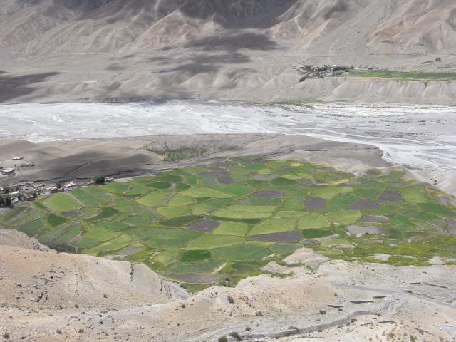 キー寺から見下ろすパッチワーク状の畑