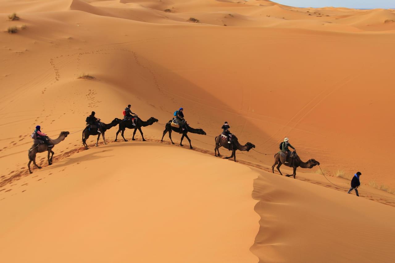 ラクダで大砂丘をめざす