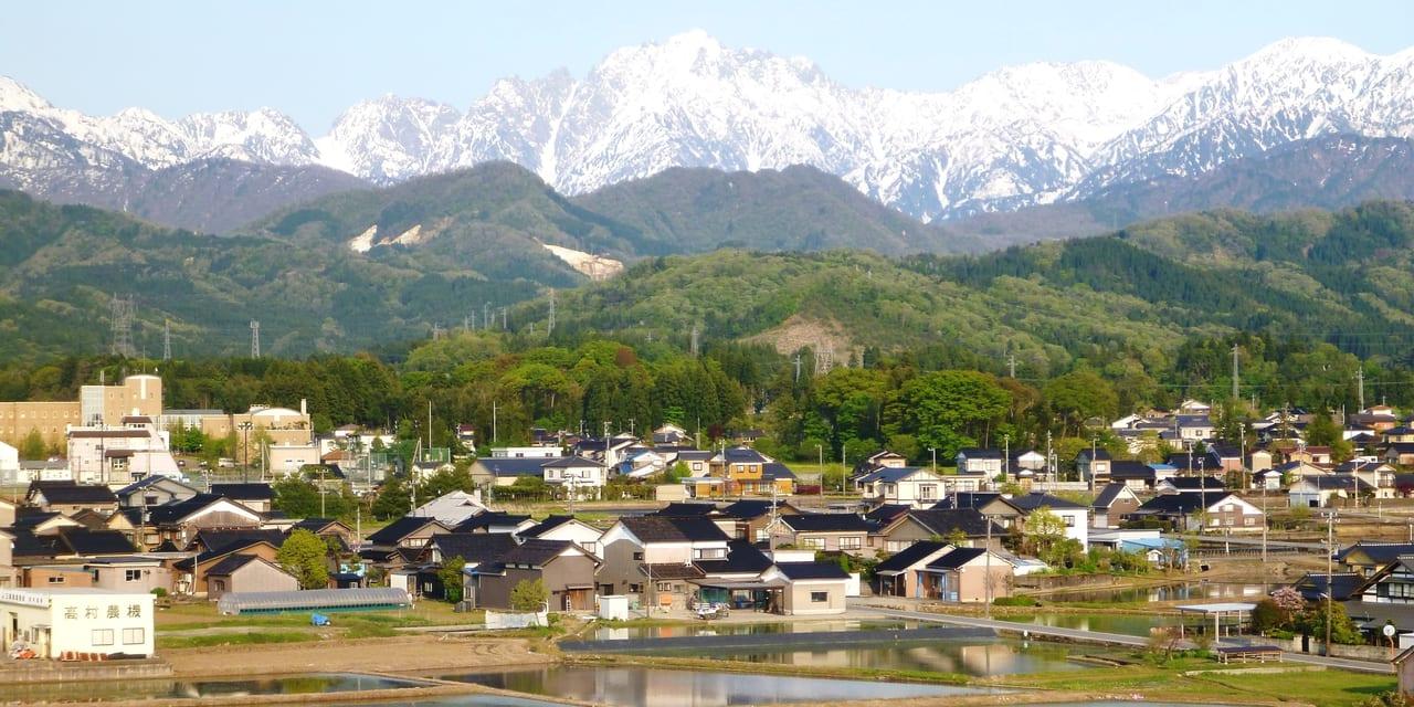 oz-d-kamiichi-taguchi