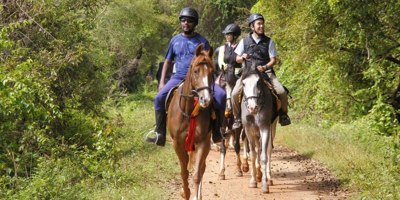 スリランカの自然を体感しながらの乗馬です