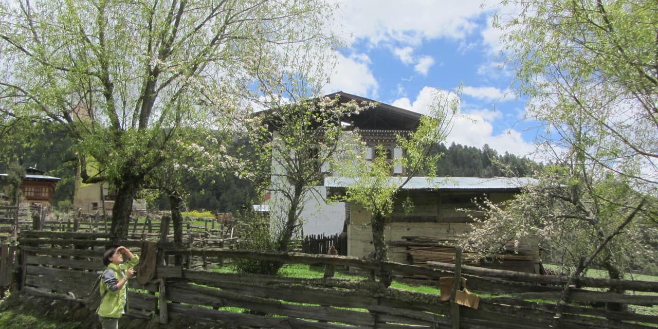 穏やかな春のポブジカの谷