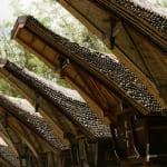 トンコナンの前に並ぶ米倉(アラン) 竹製の屋根は減りつつある。いつもトンコナンと対になって立っている