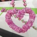 GWのムゴナはバラのシーズン