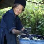 マーチャは黒モン族の村 藍染めは今も行われている