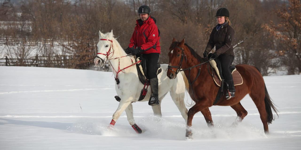 ro-sp-horseriding2019w