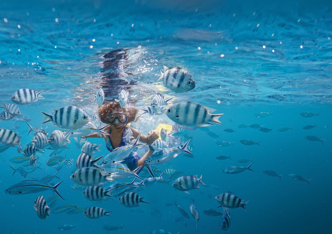 美しい海でのシュノーケリングも