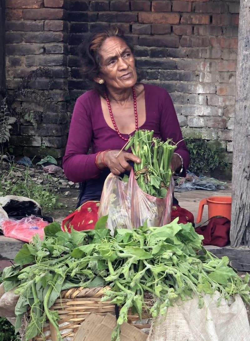 カボチャの葉を売るおばあさん