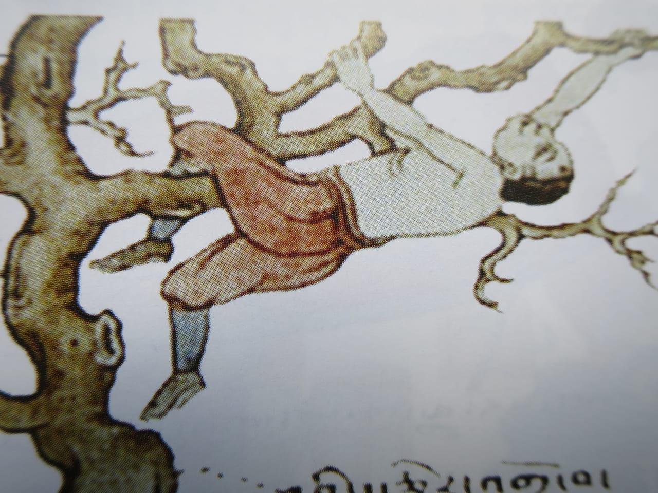 冬に木に登ってはいけない
