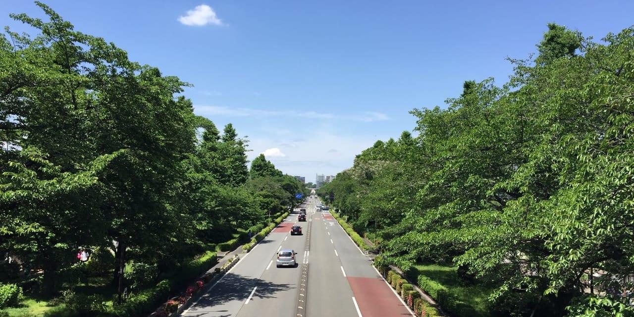「大学通り」の陸橋からJR国立駅方面を 望む