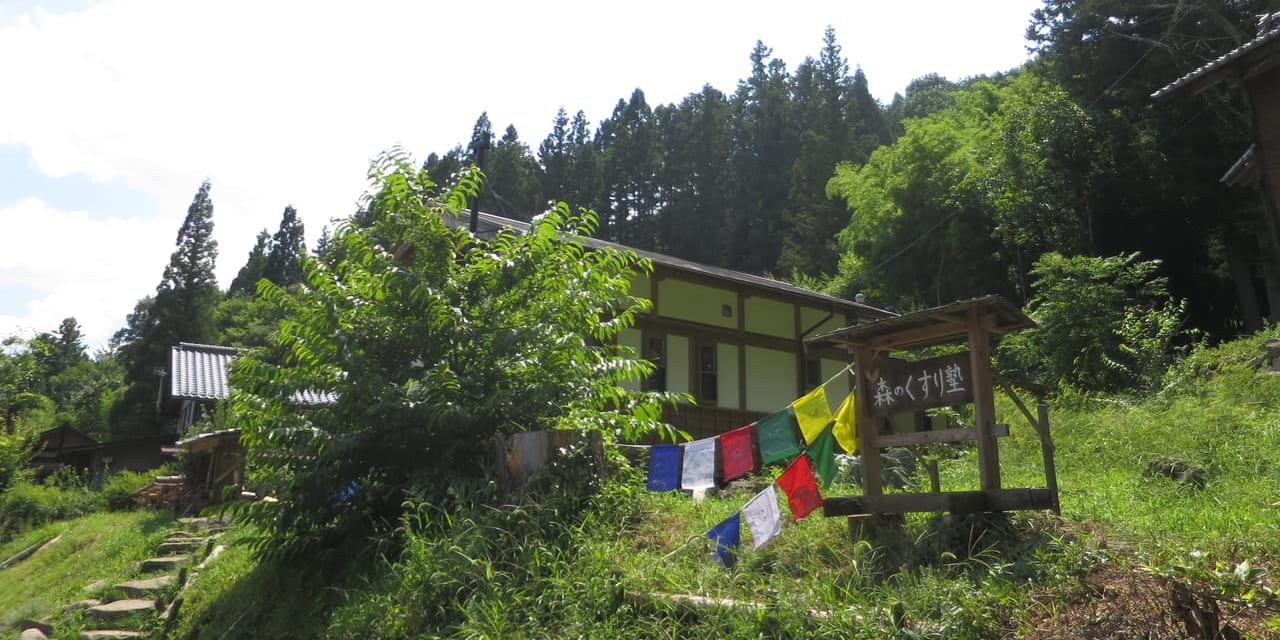 oz-d-ogawahyakuyaku1