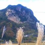 城山南壁とススキ