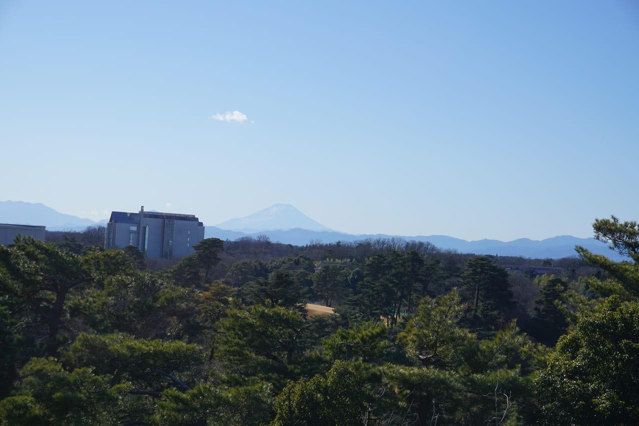 荒幡富士頂上からの富士山