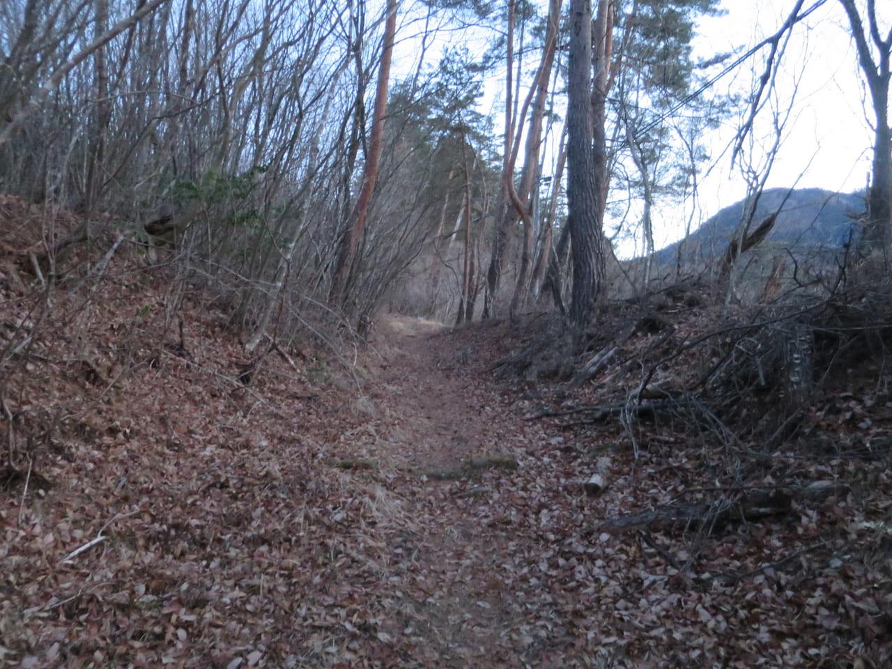 野倉への道