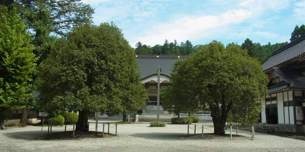 ozu-sanrou-zen